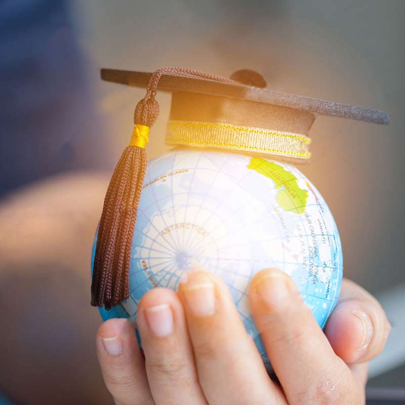 Human hand with a globe shows about Thames International Educational Consultancy